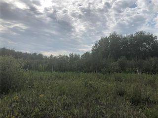 Photo 1: 0 520 Highway in Lac Du Bonnet RM: RM of Lac du Bonnet Residential for sale (R28)  : MLS®# 1923428