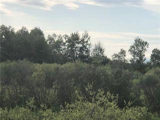 Photo 12: 0 520 Highway in Lac Du Bonnet RM: RM of Lac du Bonnet Residential for sale (R28)  : MLS®# 1923428