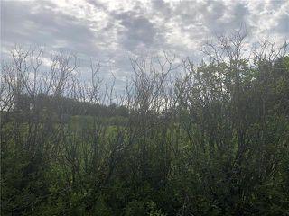 Photo 6: 0 520 Highway in Lac Du Bonnet RM: RM of Lac du Bonnet Residential for sale (R28)  : MLS®# 1923428