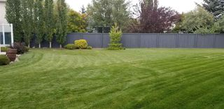 Photo 50: 306 NORWOOD Court: Sherwood Park House for sale : MLS®# E4187312