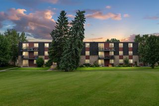 Photo 4: 17B 80 Galbraith Drive SW in Calgary: Glamorgan Apartment for sale : MLS®# A1009732