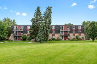 Photo 3: 17B 80 Galbraith Drive SW in Calgary: Glamorgan Apartment for sale : MLS®# A1009732