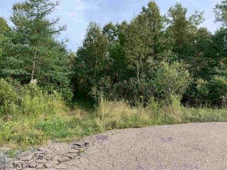 Photo 3: Acreage Warburton Road in Gardiner Mines: 203-Glace Bay Vacant Land for sale (Cape Breton)  : MLS®# 202018915