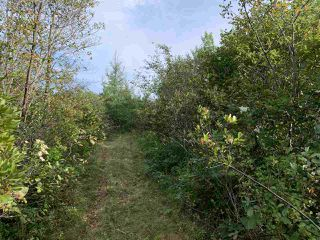 Photo 2: Acreage Warburton Road in Gardiner Mines: 203-Glace Bay Vacant Land for sale (Cape Breton)  : MLS®# 202018915