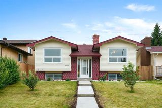 Main Photo: 6003 PINEPOINT Drive NE in Calgary: Pineridge Detached for sale : MLS®# A1033893