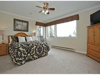 Photo 11: 3615 NICO WYND Drive in Surrey: Elgin Chantrell Home for sale ()  : MLS®# F1419011