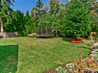 "Photo 45: 2898 146A Street in Surrey: Elgin Chantrell House for sale in ""ELGIN RIDGE"" (South Surrey White Rock)  : MLS®# F1220552"