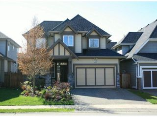 "Photo 1: 7385 201B Street in Langley: Willoughby Heights House for sale in ""Jericho Ridge"" : MLS®# F1308790"