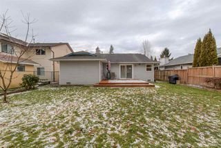 Photo 12: 11960 238B STREET in Maple Ridge: Cottonwood MR House for sale : MLS®# R2023536