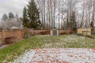Photo 11: 11960 238B STREET in Maple Ridge: Cottonwood MR House for sale : MLS®# R2023536