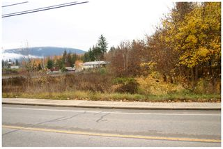 Photo 5: 480 Southeast 30 Street in Salmon Arm: SE Vacant Land for sale : MLS®# 10171761