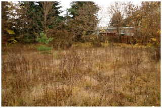 Photo 13: 480 Southeast 30 Street in Salmon Arm: SE Vacant Land for sale : MLS®# 10171761