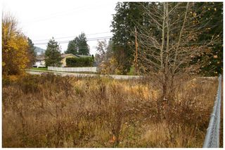 Photo 14: 480 Southeast 30 Street in Salmon Arm: SE Vacant Land for sale : MLS®# 10171761