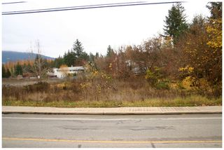 Photo 6: 480 Southeast 30 Street in Salmon Arm: SE Vacant Land for sale : MLS®# 10171761