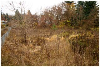 Photo 8: 480 Southeast 30 Street in Salmon Arm: SE Vacant Land for sale : MLS®# 10171761