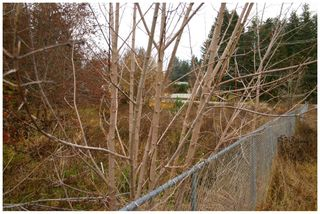 Photo 15: 480 Southeast 30 Street in Salmon Arm: SE Vacant Land for sale : MLS®# 10171761