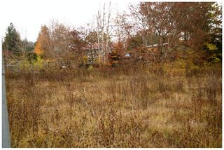 Photo 12: 480 Southeast 30 Street in Salmon Arm: SE Vacant Land for sale : MLS®# 10171761