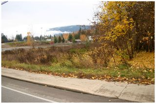 Photo 4: 480 Southeast 30 Street in Salmon Arm: SE Vacant Land for sale : MLS®# 10171761