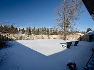 Photo 14: 18924 99A Avenue in Edmonton: Zone 20 House for sale : MLS®# E4191000