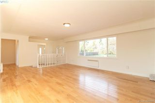 Photo 4: 835 Birch Rd in NORTH SAANICH: NS Deep Cove House for sale (North Saanich)  : MLS®# 840999