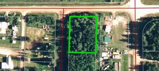 Photo 1: 1st street TWP RD 661: Flatbush Vacant Lot for sale : MLS®# E4203888