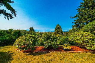 Photo 4: 5309 UPLAND Drive in Delta: Cliff Drive House for sale (Tsawwassen)  : MLS®# R2527108