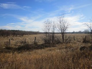 Photo 24: NW 24-54 RR 131: Niton Junction Rural Land for sale (Edson)  : MLS®# 32590