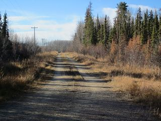 Photo 17: NW 24-54 RR 131: Niton Junction Rural Land for sale (Edson)  : MLS®# 32590