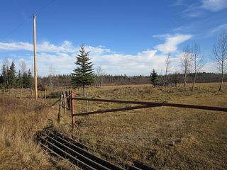 Photo 27: NW 24-54 RR 131: Niton Junction Rural Land for sale (Edson)  : MLS®# 32590