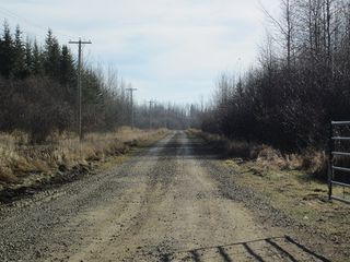 Photo 15: NW 24-54 RR 131: Niton Junction Rural Land for sale (Edson)  : MLS®# 32590