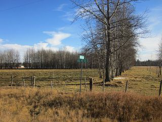 Photo 33: NW 24-54 RR 131: Niton Junction Rural Land for sale (Edson)  : MLS®# 32590