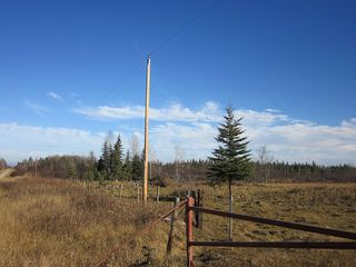 Photo 28: NW 24-54 RR 131: Niton Junction Rural Land for sale (Edson)  : MLS®# 32590