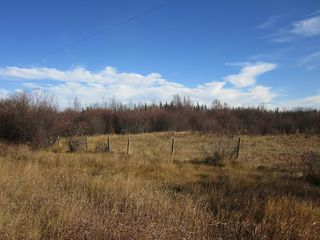 Photo 11: NW 24-54 RR 131: Niton Junction Rural Land for sale (Edson)  : MLS®# 32590