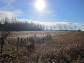 Photo 21: NW 24-54 RR 131: Niton Junction Rural Land for sale (Edson)  : MLS®# 32590