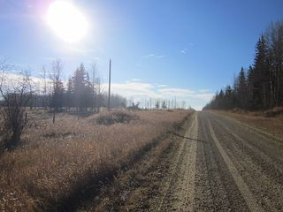 Photo 32: NW 24-54 RR 131: Niton Junction Rural Land for sale (Edson)  : MLS®# 32590