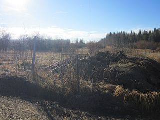 Photo 13: NW 24-54 RR 131: Niton Junction Rural Land for sale (Edson)  : MLS®# 32590