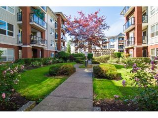 Photo 13: 308 20239 MICHAUD CRESCENT in Langley: Langley City Condo for sale : MLS®# R2018101