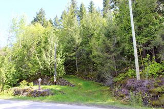 Photo 30: 1706 Blind Bay Road: Blind Bay Vacant Land for sale (South Shuswap)  : MLS®# 10185440