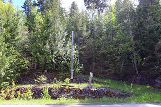 Photo 11: 1706 Blind Bay Road: Blind Bay Vacant Land for sale (South Shuswap)  : MLS®# 10185440