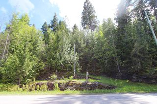 Photo 31: 1706 Blind Bay Road: Blind Bay Vacant Land for sale (South Shuswap)  : MLS®# 10185440