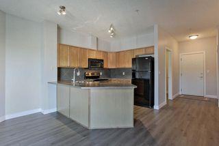 Photo 9: 410 226 MACEWAN Road in Edmonton: Zone 55 Condo for sale : MLS®# E4174945
