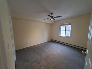 Photo 11: 5107 604 8 Street SW: Airdrie Apartment for sale : MLS®# A1011898