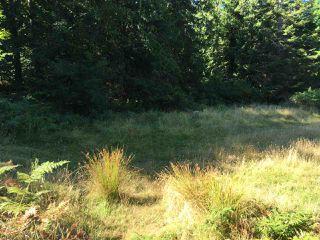 Photo 4: 456 DIXON Road: Mayne Island Land for sale (Islands-Van. & Gulf)  : MLS®# R2487861