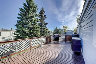 Photo 27: 97 1101 84 Street NE in Calgary: Abbeydale Mobile for sale : MLS®# A1036614