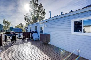 Photo 26: 97 1101 84 Street NE in Calgary: Abbeydale Mobile for sale : MLS®# A1036614