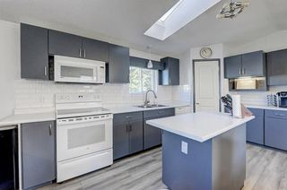 Photo 13: 97 1101 84 Street NE in Calgary: Abbeydale Mobile for sale : MLS®# A1036614