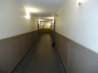 Photo 20: 314 10235 112 Street in Edmonton: Zone 12 Condo for sale : MLS®# E4217594