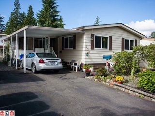 "Photo 1: 138 3665 244TH Street in Langley: Otter District Manufactured Home for sale in ""LANGLEY GROVE ESTATES"" : MLS®# F1217824"
