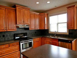 Photo 4: 732 BOULDER CREEK Drive: Langdon Residential Detached Single Family for sale : MLS®# C3566131