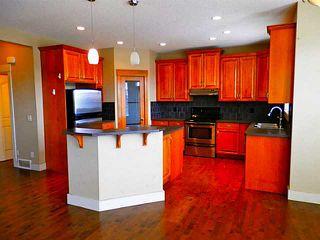 Photo 5: 732 BOULDER CREEK Drive: Langdon Residential Detached Single Family for sale : MLS®# C3566131